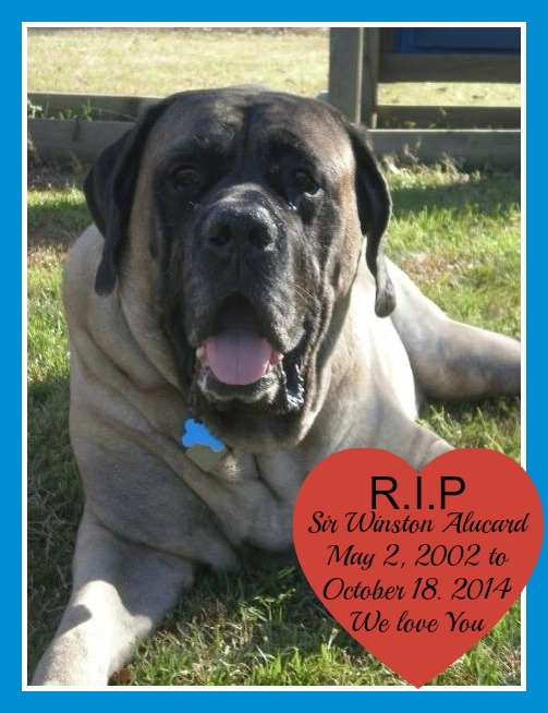 RIP Winston