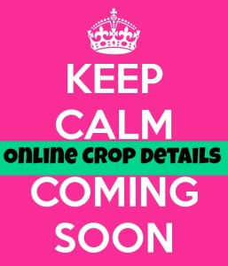 keep-calm-it-s-coming-soon-4
