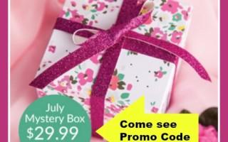 July Cricut Mystery Box Reveal