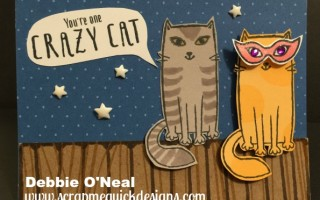 August SOTM – Purr-fect Halloween Projects