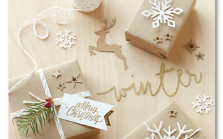 New CTMH Holiday Expresssions Catalog Haul