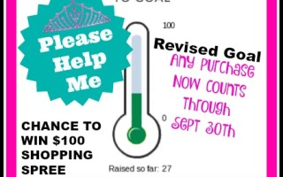 Only 10 Days Left…Can You Please Help ?