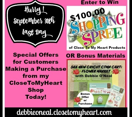 Last Day ! $100 Shopping Spree and Bonus Offer