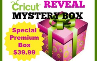 Cricut January 2017 Mystery Box Is Out !
