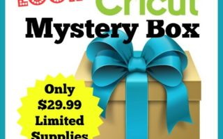 June 2017 Cricut Mystery Box is Here !